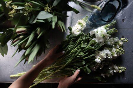 ゼニヤのキホン『錢屋カフヱーと移ろいゆく花』